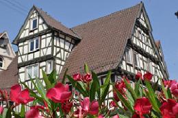 Calw - Altstadt